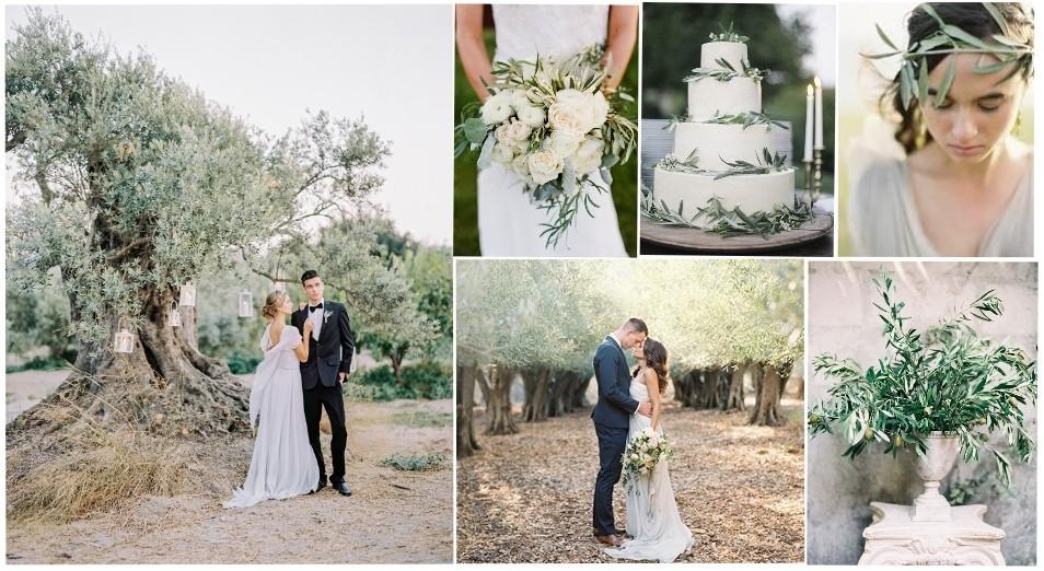 Svatba V Recku V Olivovem Haji Predstavujeme Novinku Roku 2017