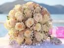 Svatební květina, Kréta