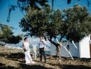 Svatba v olivovém háji, Kos