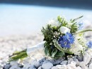 Svatební květina, Lefkada