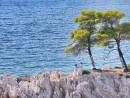 Svatba na útesu, Skopelos